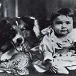Первая в мире собака-кинозвезда