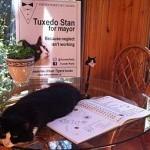 Кота выдвинули в мэры Галифакса