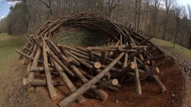 Гигантское гнездо