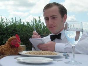 В Англии открыт отель для кур